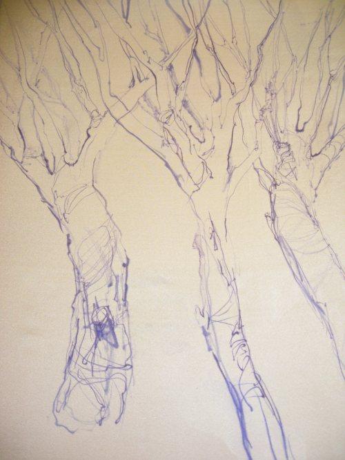 Drawing on Silk